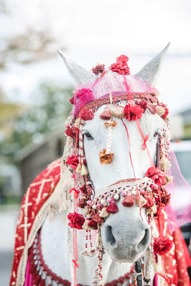 hannah taylor wedding 035